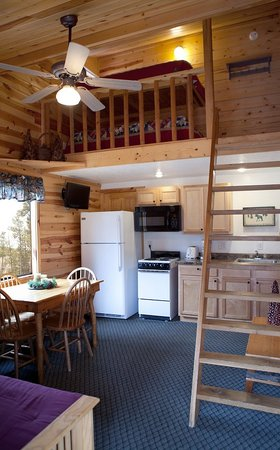 Mountain View Lodge & Cabins : Duplex cabin with loft