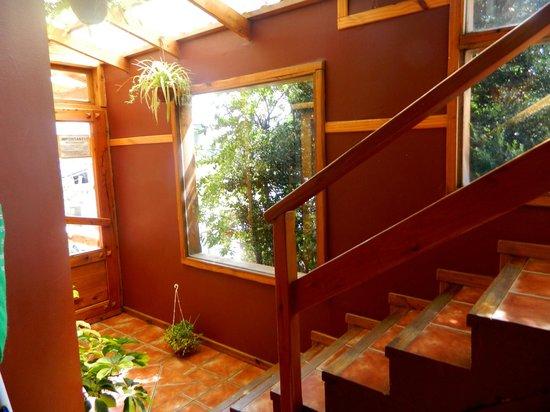 Hostel 41 Below: escalera y entrada desde la cocina