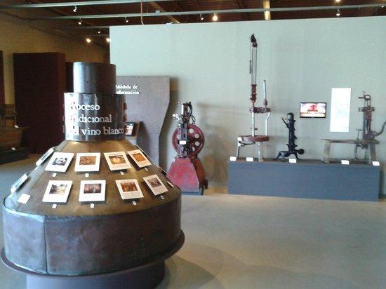 Museo de la vid y el vino: interior del museo sala 3