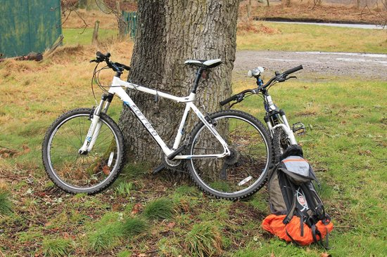 Inverness Bike Hire: The bikes.