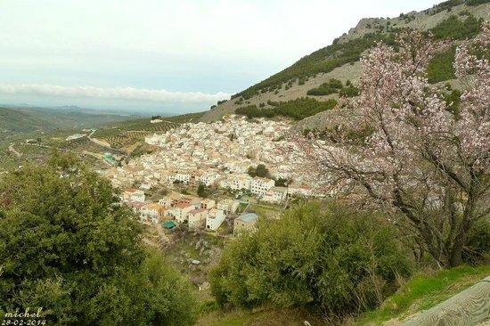 Hotel Rural Puerto Magina: andando desde el hotel hacia Torres