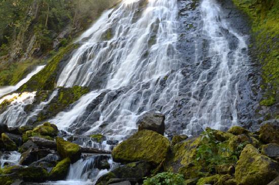 Diamond Creek Falls, near Oakridge Oregon