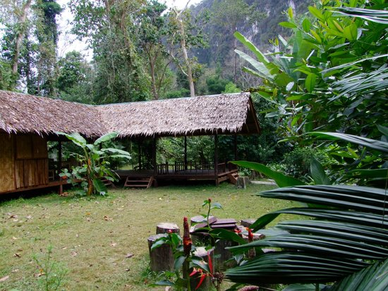 Our Jungle House: relaxing area