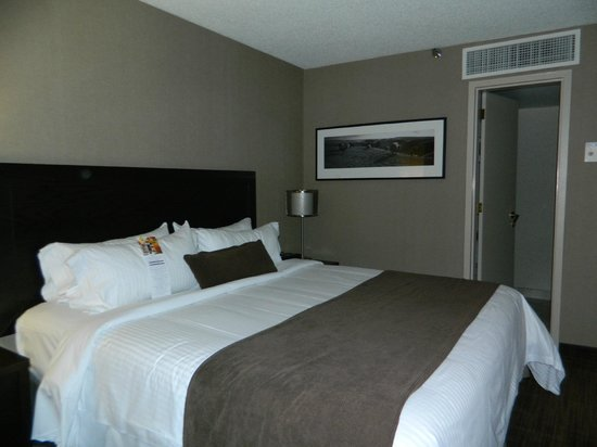 Delta Hotels Calgary Airport In-Terminal: Comfortable King Bed