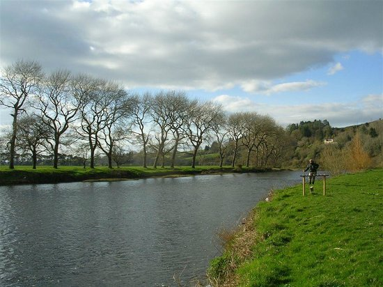 Ballyduff, İrlanda: The River