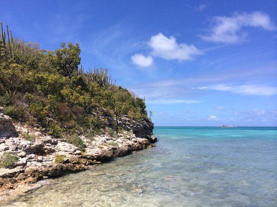 Creole Antigua Tours: Bird Island Paradise