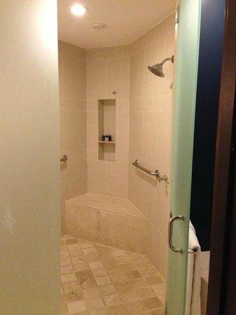 Hard Rock Hotel & Casino Punta Cana: HUGE shower w/ dual shower heads