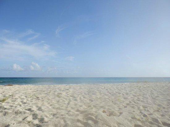 Hilton Barbados Resort: The beach