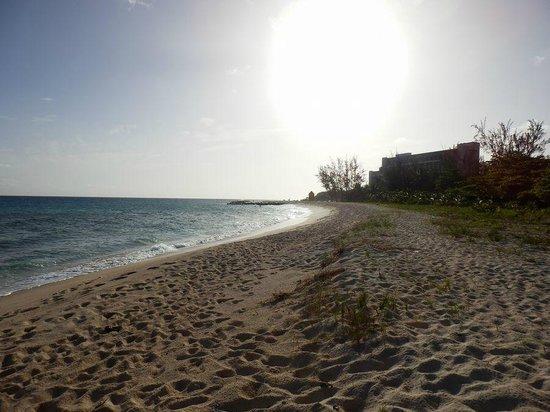 Hilton Barbados Resort: beach