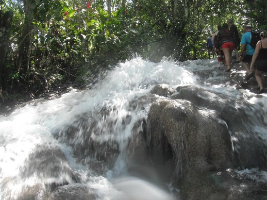 Dunn's River Falls and Park: Dunn's River
