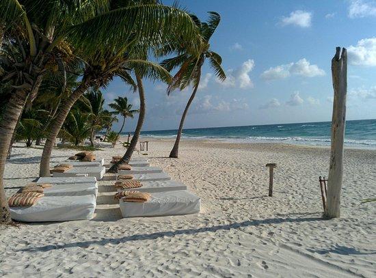 Cabanas Tulum : Nice place to fall asleep on the beach.