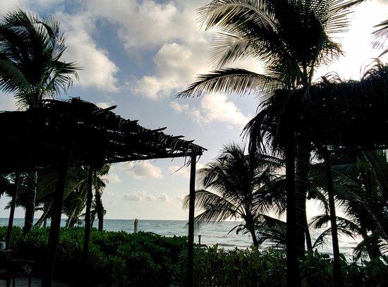 Cabanas Tulum: View at breakfast