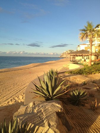 Grand Solmar Land's End Resort & Spa : the private beach
