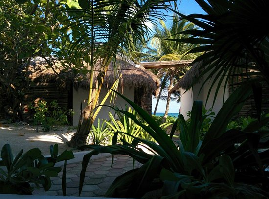 Cabanas Tulum : View from room 28, partial beach view.