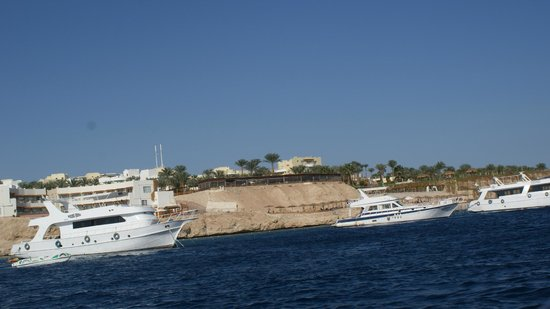 Park Inn by Radisson Sharm El Sheikh Resort: Sharks Bay - Tiran Island speed boat trip