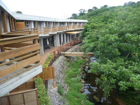 Jungle Hotel Painu Maya: ホーラ川