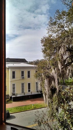 Mansion on Forsyth Park, Autograph Collection: View from hotel room (one of 3 bay windows)
