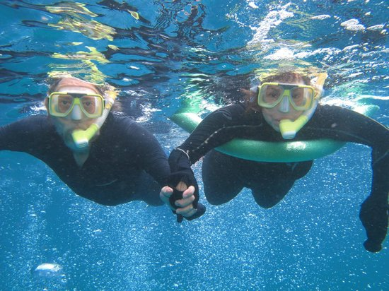 Silversonic Dive & Snorkel: Beware of the photographer in the water