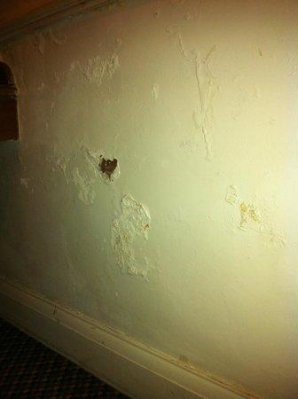 Churchills Hotel: Damp lower wall, room 8 Churchills