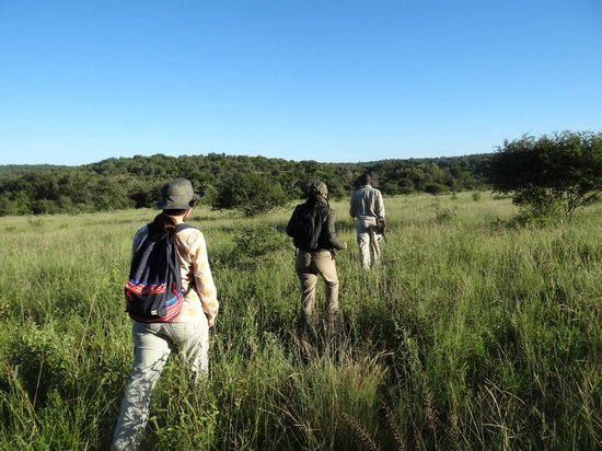 Tremisana Game Lodge: caminata