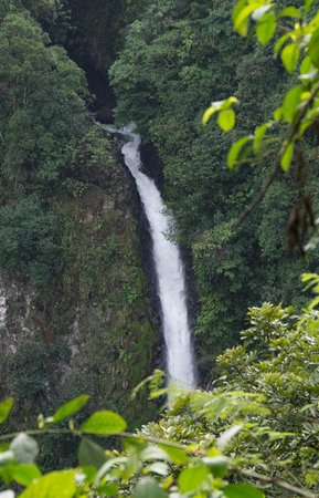 Hotel Arenal Green: The Top of the Waterfall