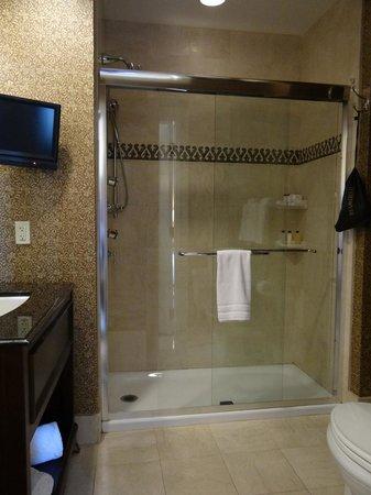 The Roosevelt New Orleans, A Waldorf Astoria Hotel: shower