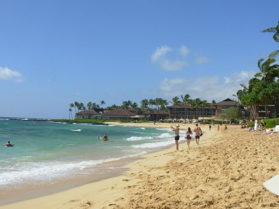 Kiahuna Plantation Resort: The beautiful beach