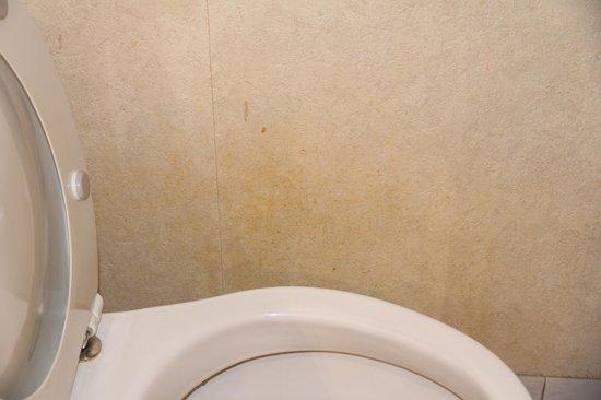 Mercure Annecy Sud: MUR DES WC PAS DE BALAYETTE