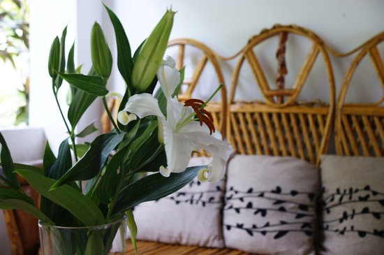 The Balboa Heights Bed & Breakfast: Always fresh flowers