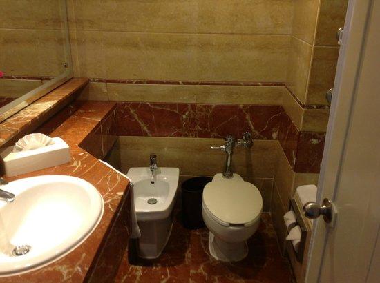 Crowne Plaza Santo Domingo: Banheiro do quarto