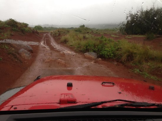 Adventure Lanai Ecocenter: why you need 4x4