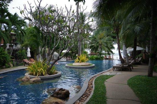 Muang Samui Spa Resort: プール