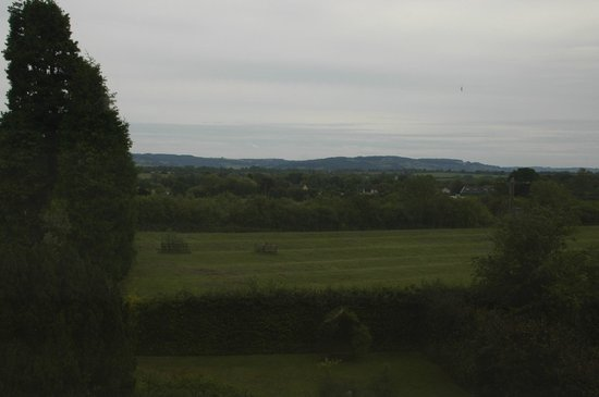 Bowers Hill Farm B&B: Fields of green