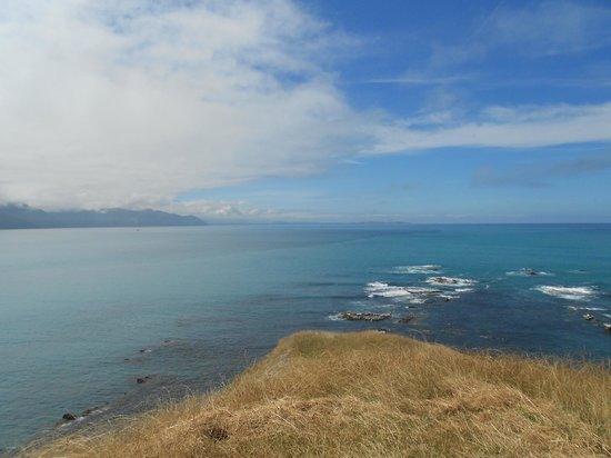 Glenstrae Farm 4 Wheel Adventures : Kaikoura coast line
