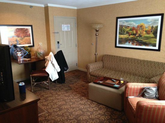 Homewood Suites Syracuse/Liverpool: Living room