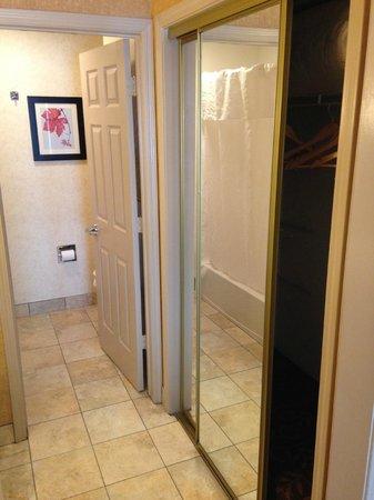 Homewood Suites Syracuse/Liverpool: Bathroom area