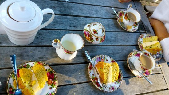 Mokoia Downs Estate B&B : afternoon tea