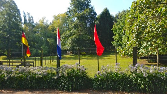 Mokoia Downs Estate B&B: flags
