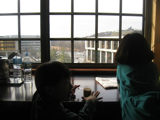 Sheraton Tarrytown Hotel: my kids are looking out the window