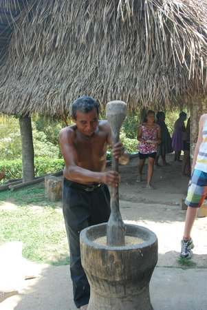 Cotton Tree Lodge : Eladio demonstrating rice husking by hand ...
