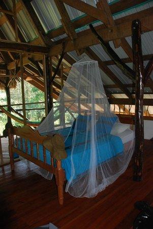 Cotton Tree Lodge: Family Cabana ... Garden Room ....