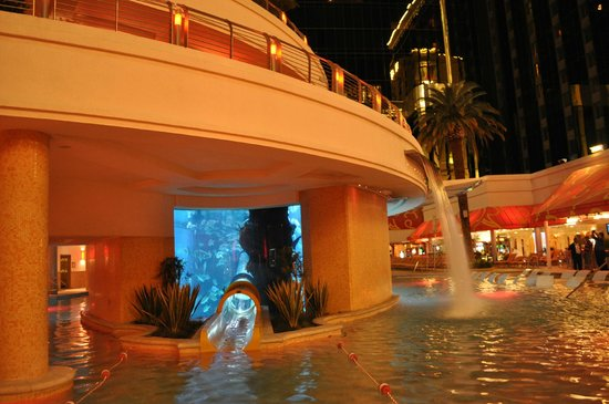 Golden Nugget Hotel: Pool with a shark tank and water slide going through it
