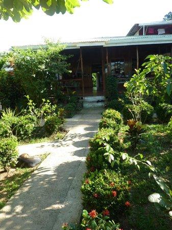 Ranchitos Las Cotingas : Lovely garden