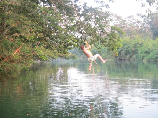 Cotton Tree Lodge: Enjoying the rope swing over the Moho River ...