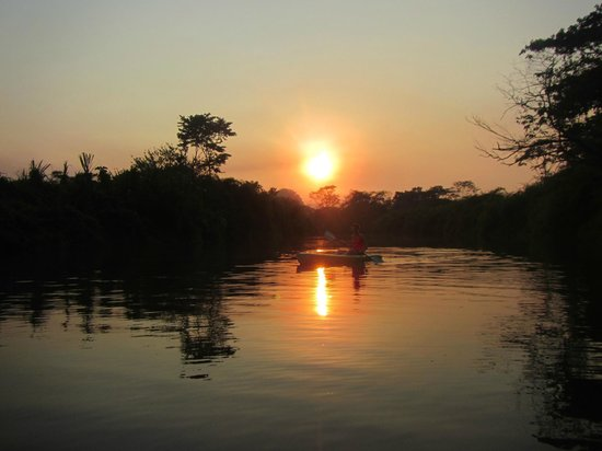 Cotton Tree Lodge: Sunset paddle on the Moho River