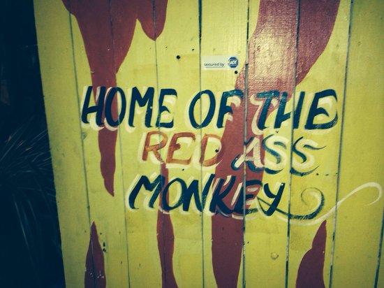 Redbone's Steak House & Saloon: The Home!
