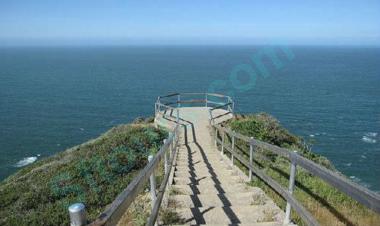San Francisco Shuttle Tours Muir Beach