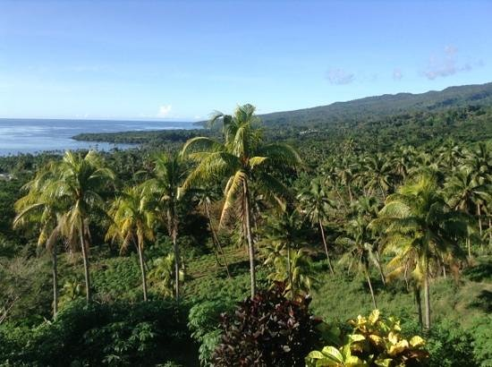 Maravu Taveuni Lodge : viewpoint they drove us to after ferry pickup