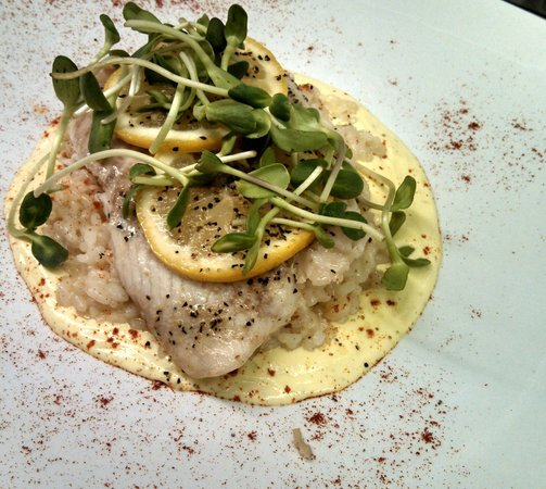 Spiro's Downtown Restaurant: Citrus Tilapia over lemon rissoto