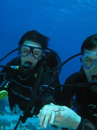 Cancun Scuba Center: Proposal!